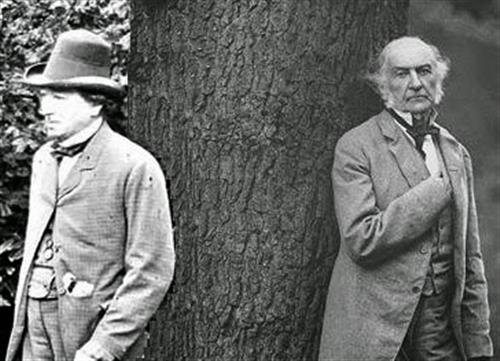 Disraeli and gladstone on arboriculture awa tree blog for The gladstone