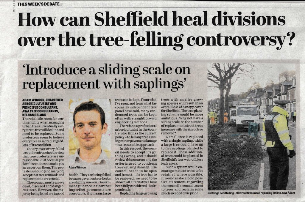 Article on the sheffield division over the tree-felling controversy.