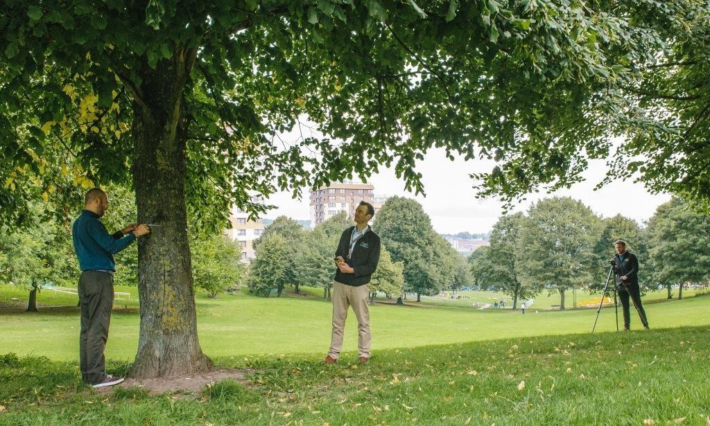 AWA Tree Consultants Yorkshire